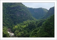 Petit ruisseau deviendra grand (PtiteArvine) Tags: jungle forêt rivière fleuve montagnes nature naturesauvage colombie riomagdalena sanagustin