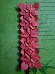 Hydrangeas in a row; 6cm×24cm (Jayati Sen) Tags: fujimoto hydrangeas origami