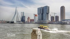 Watertaxi, Nieuwe Maas, Rotterdam, Netherlands - 5209 (HereIsTom) Tags: webshots travel europe netherlands holland dutch view nederland views you sony cybershot hx9v nature sun tourists cycle vakantie fietsvakantie cycling holiday bike bicycle fietsen taxi adventure rivier eramus nieuwe city brug rotterdam town water transport ride bridge fast buildings river watertaxi maas mei 2017 may vessels boot schepen ship harbour tours boat haven boten varen stad harbor world erasmusbrug