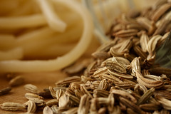 (Laszlo Papinot) Tags: fennel pasta jar spice seed cooking kitchen banch