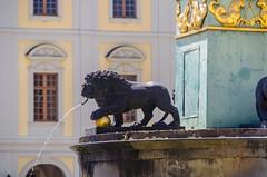 DSC_6618 (mkk3a) Tags: architektura ludwigsburg niemcy schlossludwigsburg lew rzeźba