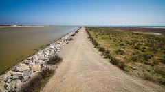 El río y el mar (SantiMB.Photos) Tags: 2blog 2tumblr 2ig paisaje landscape delta llobregat río river mar sea geo:lat=4130134158 geo:lon=213186120 geotagged elpratdellobregat cataluna españa esp