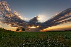 2017-07-04_O21A7861_Molsheim-f (Balla Jean-Charles) Tags: alsace nuage kirchheim monstre lever soleil
