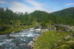 DSC02929 Grytørstølen (JarleB) Tags: røldal røldalstrimmen blåbergdalen haukelifjell haukeli tur norway norwegen norge nature natur fjell mountain hordaland grytørstølen hansastølen