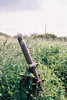 漂流 XLVI (florian.turgeon) Tags: film canon ae1 france normandy フィルム フランス 400 abandonned green rust