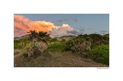 Natural colors (g.femenias) Tags: landscape nature clouds sunset sunsetlight colors sacolòniadesantpere artà mallorca