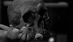 CRANEO - SKULL (jpi-linfatiko) Tags: bn bw blackandwhite blancoynegro blanconegro blackwhite sigma1770 nikon d5200 skull craneo ajos naturalezamuerta naturaleza nature natural bodegon stilllife test experimento prueba calaca