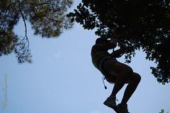 """Accroche-toi à la branche, j'ai lâché le mousqueton.. (Brigitte .. . """"Tatie Clic"""") Tags: 2010062734 juin été contrejour contreplongée accrobranche acrobate arbre personnage"""