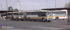 Diplomata Articulado Transbus 1 (Museu Digital Nielson Diplomata) Tags: nielson diplomata articulado