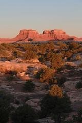 Redrock vertical (RPahre) Tags: redrock sunrise canyonlandsnationalpark utah canyonlands butte