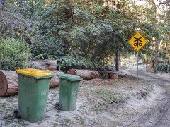 Belgrave bins (sander_sloots) Tags: bins sign railway belgrave dandenong ranges national park green yellow trees trunk bomen kliko container groen geel verkeersbord spoorwegovergang crossing wheelie bin
