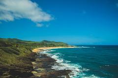 Blue Coastline (Kou Thao) Tags: animals nature wildlife hawaii scenery photograhy kokohead adventure vintage vibes tropical airplane sky sunset clouds traveler luau horse jungle