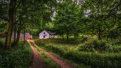 The Hideaway..... (Einir Wyn Leigh) Tags: landscape cottage trees forest scotland happy light foliage flowers rural wilderness peace building uk nikon camera