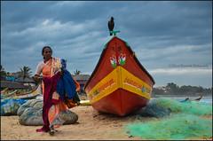Bird.    Mahabalipuram (Claire Pismont) Tags: asie asia inde india indedusud indian travelphotography travel tamilnadu travelshot boat blue bird woman women sea seaside seashore pismont clairepismont colorful couleur color colour
