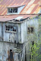 "Window ""pains"". HWW (Note-ables by Lynn) Tags: fallingapart oldbuildings balaclavaontario windowwednesday windows"