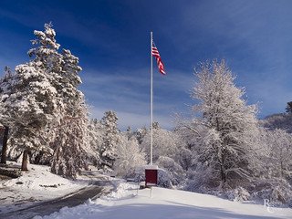 Red White and Blue Winter