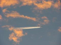 Cruise_altitude