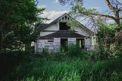 In The Thick Of It (Pedalhead'71) Tags: whitmancounty washington abandoned house palouse
