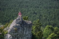 jura (PanMajster) Tags: jura krakowsko częstochowska góra zborów bokeh poland polska rock trees skałki drzewa natura nature szlak orlich gniazd pentax k5
