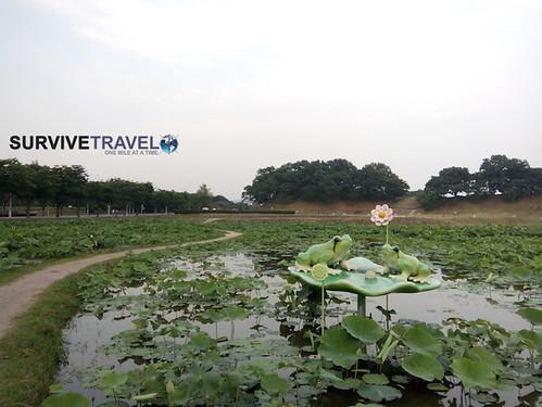 Gyeongju, Lily Pond