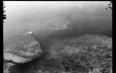 Pond (Robbie Ingram) Tags: film black white shoot art fine religion philosopy ilfordhp5 nikon fe beach dirt earth still life vanitas is dead water pond