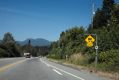 unseasonal sign (n.a.) Tags: bc canada drivingtoharrison slippery when frosty sign yellow rhombus driving road