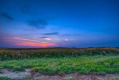 Sunset - HDR (gilles_t75) Tags: d7200 france gillest hdr nikkor1024mmf3545 nikon bracketing exposurefusion highdynamicrange photohdr photomatix tonemapping îledefrance coucherdesoleil sunset champ heurebleue ciel bluehour