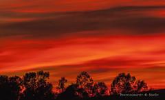 Luces en el cielo .... (Senén García.) Tags: cielo atardecer ocaso rojo senén