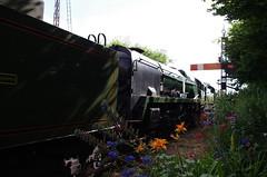 IMGP1778 (Steve Guess) Tags: watercressline midhants steam railway heritage line ropley alresford hampshire england gb uk bullied pacific battleofbritain34052 34053 lorddowding sirkeithpark 34052 braunton battleofbritain 34046 double heading