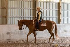 JBC_9330.jpg (Jim Babbage) Tags: krahc annualshow horse bethany horseshow 186