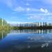 Its Name is Pond, Kyrgyz Pond