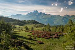Colle di Sampeyre (Anteriorechiuso Santi Diego) Tags: sampeyre mountain piedmont sunset collesampeyre