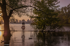Flooded Toronto Islands (Phil Marion) Tags: philmarion travel beautiful cosplay candid beach woman girl boy teen 裸 schlampe 懒妇 나체상 फूहड़ 벌거 벗은 desnudo chubby fat nackt nu निर्वस्त्र 裸体 ヌード नग्न nudo ਨੰਗੀ голый khỏa جنسي 性感的 malibog セクシー 婚禮 hijab nijab burqa telanjang обнаженный عري nubile برهنه hot phat nude slim plump tranny cleavage sex slut nipples ass xxx boobs dick tits upskirt naked sexy bondage fuck piercing tattoo dominatrix fetish torontoislandflood