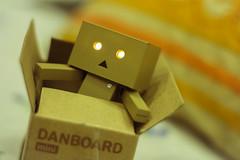 Box Life (shadman ali) Tags: danbo danboard danboardmini danbolove macro box dof shadmanphotography shadmanali shadman canon700d canont5i shadmanaliphotography canon canoneos700d eos 700d t5i 50mm 50mmstm bokeh nofilter dhaka bangladesh actionfigure toy robot