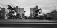 BNF Paris (Alexis Cayot) Tags: cayot epson blanc alexis stenope film v850 nationale noir panoramique pinhole paris argentique bibliotheque tmax hp5 ilford bnf pellicule 14 analog kodak