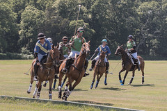 Polo up against the boards (DaveMac photography) Tags: polo newforest england newforestpoloclub sunday sunnyafternoon ponies equestrian equine mallets events pologame outdoors