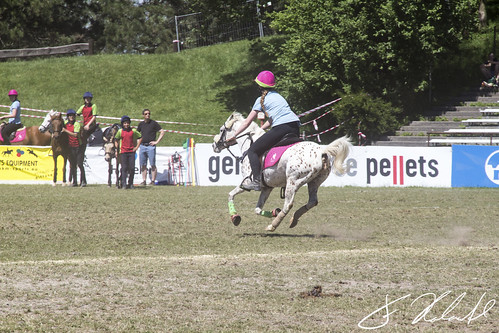 Mounted-Games Tournament