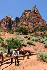 cowboys at zion (franbatt) Tags: utah usa roadtrip summer zionnatlpark zionnationalpark cowboys kisses nature explore intothewild wild wildness