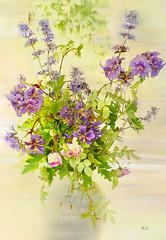 Flowers (evisdotter) Tags: flowers blommor macro 2in1 myart bouquet textured