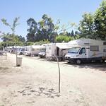 acampada-de-las-sardinas-2017
