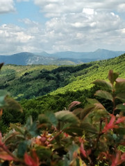 IMG_20170618_130335338 (carla2038) Tags: appennino ligure montagne panorama estate mountains italy