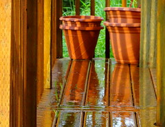 Sunny shadows and reflections on the back porch (peggyhr) Tags: peggyhr shadows wet sunlight reflections pots railing terracotta plastic bluebirdestates alberta canada deck grass infinitexposurel1