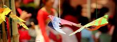 Origami birds (Jabid.Ishtiaque) Tags: bangladesh tradition culture bengali newyear noboborsho বাংলাদেশ ছবি আলোকচিত্র