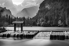 2017.06.03. Hinterstoder (Péter Cseke (mostly OFF until July 23)) Tags: firecrest formatt hitech nd blackandwhite monochrome mono scenery scenic beautiful amazing outdoors woods forest trees mountains alps alpine summer austria europe hinterstoder schiederweiher longexposure holiday travel nature landscape d750 nikon