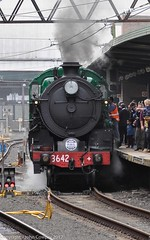 Transport Heritage Expo 2017 - -11 (john cowper) Tags: transportheritagensw centralrailwaystation transportheritageexpo heritagediesels nswrailmuseum 3642 3041 4001 mortuarystation entertainment queensbirthdayweekend sydney newsouthwales