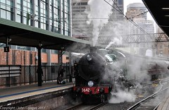 Transport Heritage Expo 2017 - 8 (john cowper) Tags: transportheritagensw centralrailwaystation transportheritageexpo heritagediesels nswrailmuseum 3642 3041 4001 mortuarystation entertainment queensbirthdayweekend sydney newsouthwales