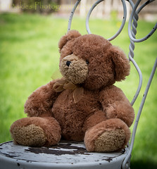 This seat is saved (HTBT) (13skies) Tags: seat seatsaved reserved teddybear sitting waiting girlfriend time daylight daytime sunny bear happyteddybeartuesday patiochair news expecting teddybeartuesday