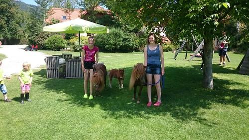 Pony wandern