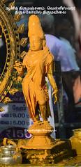 ஆனித் திருமஞ்சனம் - 2017 - வெள்ளீஸ்வரர் திருக்கோயில் திருமயிலை (Kapaliadiyar) Tags: kapaliadiyar aanithirumanjanam natarajarabishekam nataraja danceofshiva mylapore mylaporetemple