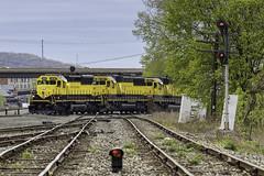 CL-3 at BD (Thomas Coulombe) Tags: susquehanna nysw cl3 emdsd33eco sd33eco emdsd60 sd60 freighttrain train bd diamond signals searchlights binghamton newyork